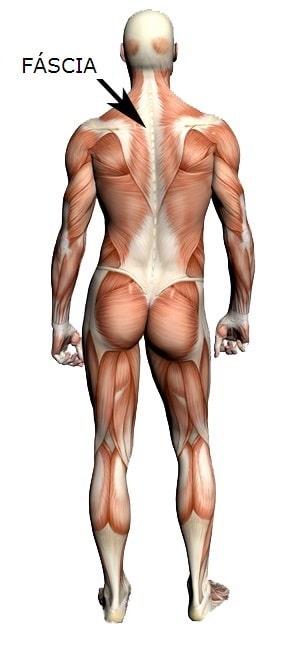 Massagem-miofascial