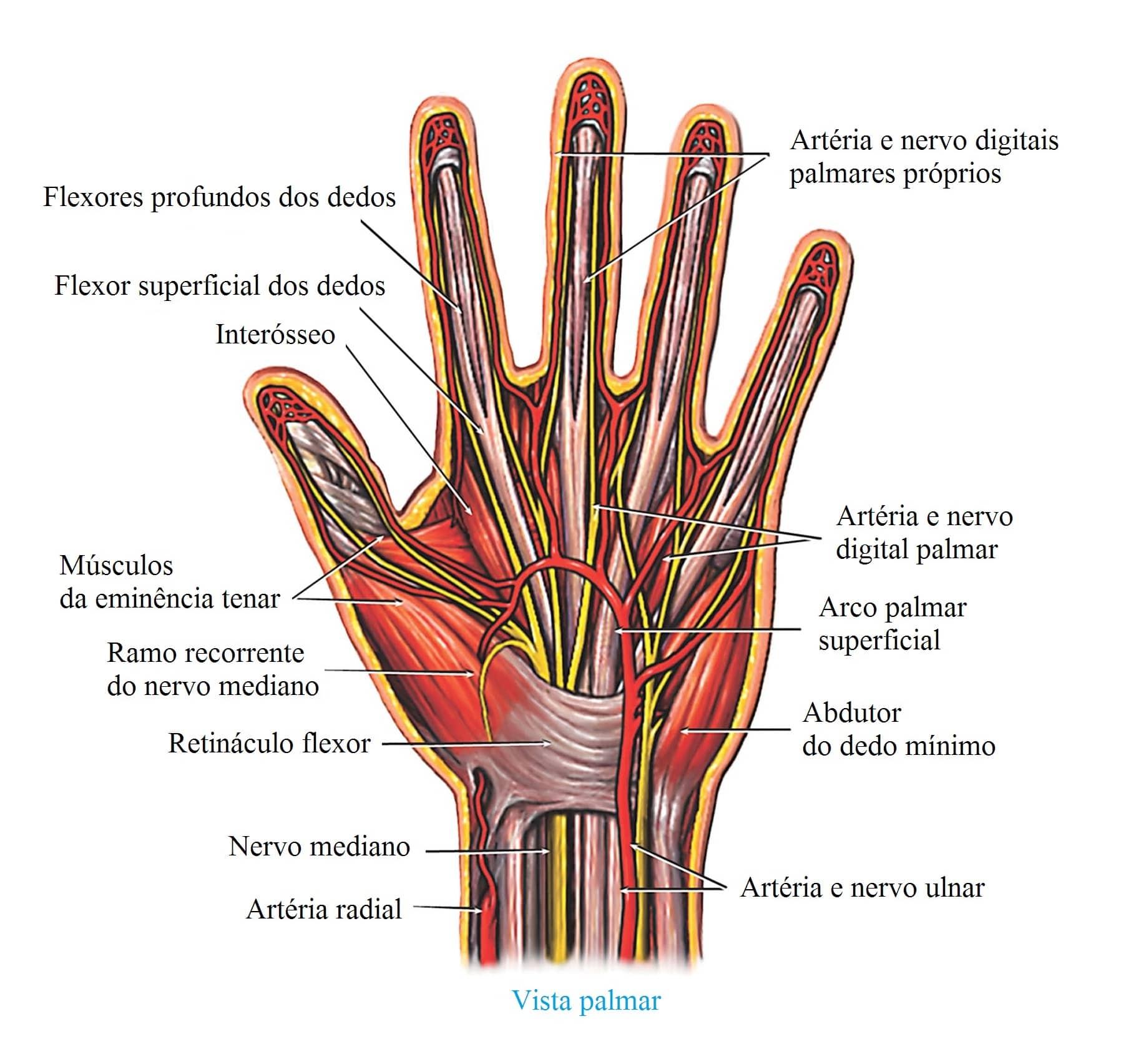 dor na palma da mão esquerda tocando violão