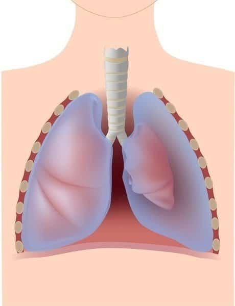 Pneumotórax pulmão esquerdo, que parece menor.