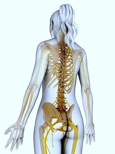 nervos, ciático, dor, quadril, correr, sentar