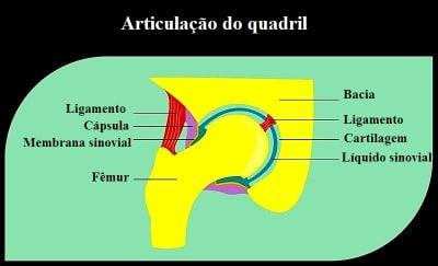 Dor no quadril artrite necrose