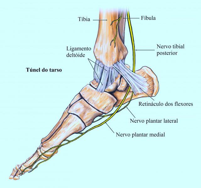 Dos nervos pés nos lesão