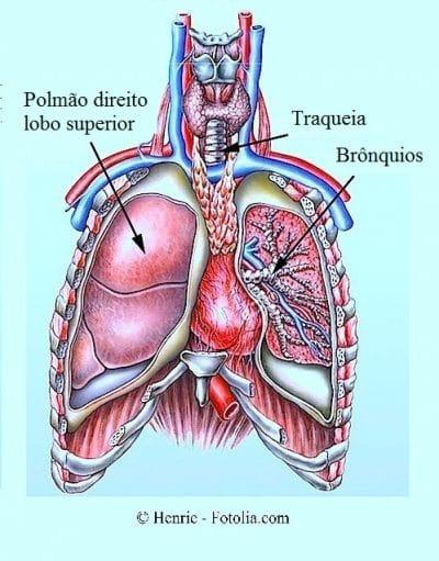 dor na região lombar do lado direito ao respirar