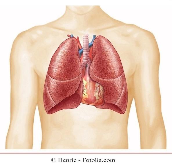 pulmão, pneumonia, dor no peito