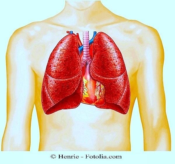 pulmão, apnéia do sono