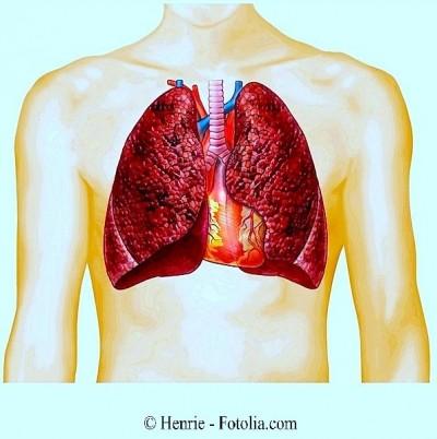 tabagismo, fumante, pulmão