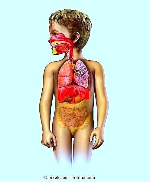 Tosse,crianças,remédios,pulmões
