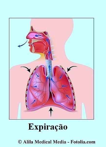 Exalação,ar, pulmões