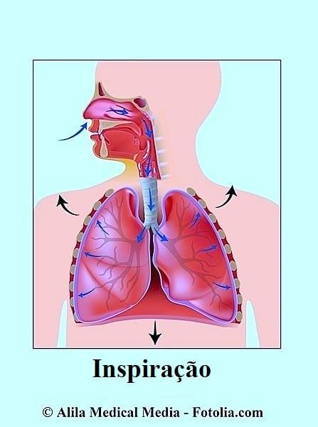 Inspiração,pulmões,dispnéia