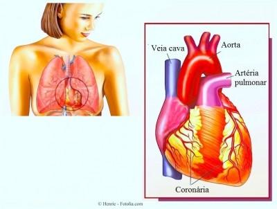 Coração, bradicardia,sinusal