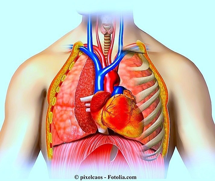 Coração, pericárdio, pericardite