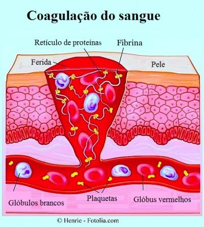 Lesões cutâneas