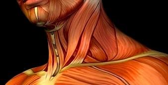Dor na cervical