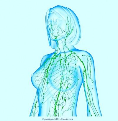 Metástase nos linfonodos,gânglios linfáticos, cancer, vasos sanguíneos