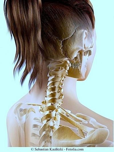 Disfunção temporal mandibular, articulação, osso temporal, crânio