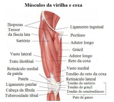 Operação em aumento em um pênis em Cazã
