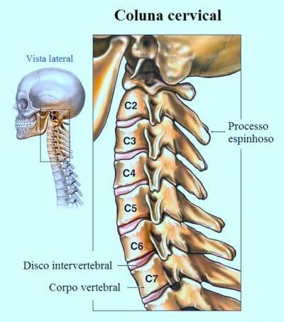coluna,vertebral,cervical,ou pescoço