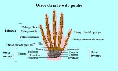 Dor na mão, dedos, punho, ossos