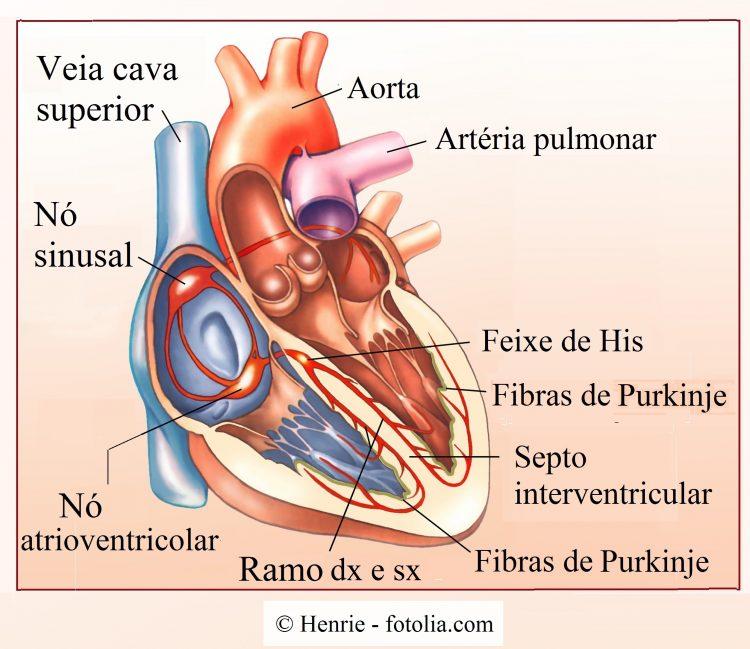 Arritmia-cardíacano-atrioventricular