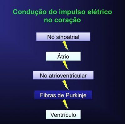 nó sinoatrial, atrioventricular, impulso