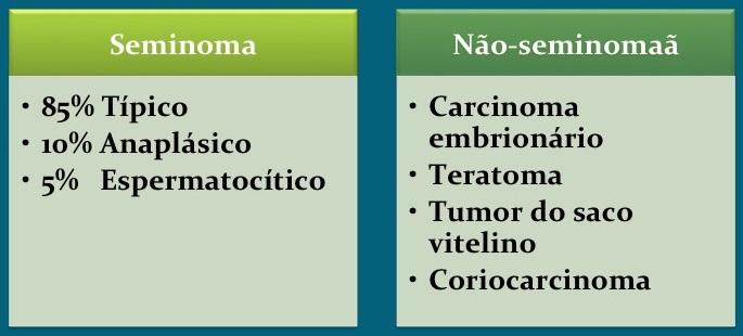 seminoma, nao-seminoma, Câncer testículo
