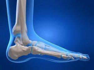 visión hacia los lados del pie anatómico, la fisioterapia, la rehabilitación y la reeducación