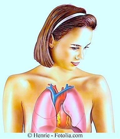 pulmones, chica, anatomía