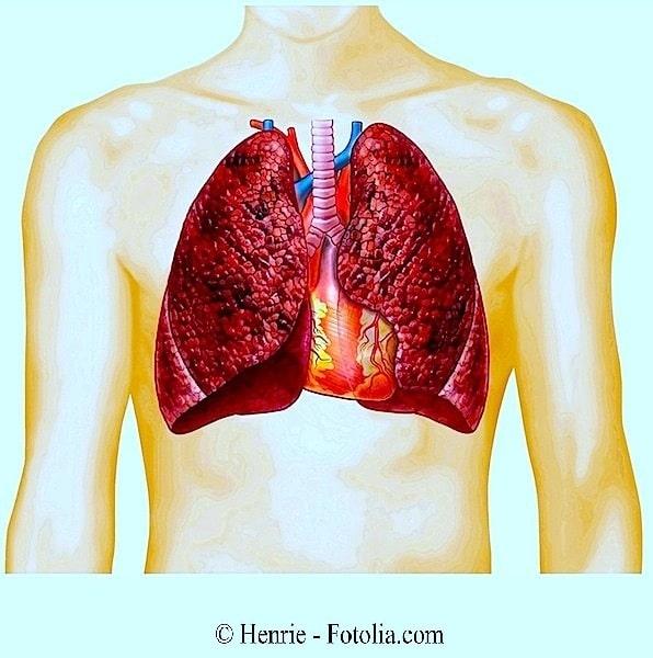 fumar, fumador, pulmón