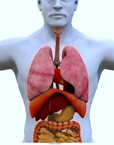 pulmón, metástasis, tumor
