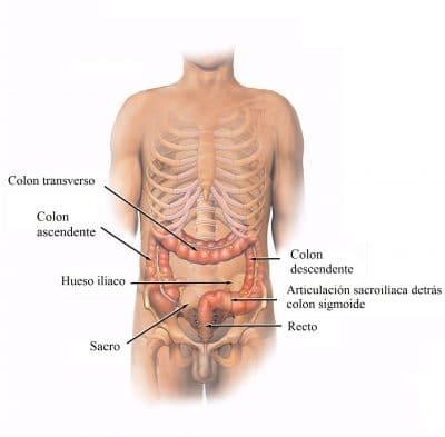 dolor muscular lado izquierdo abdomen
