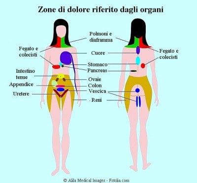 Dolor abdominal, extendido, órganos
