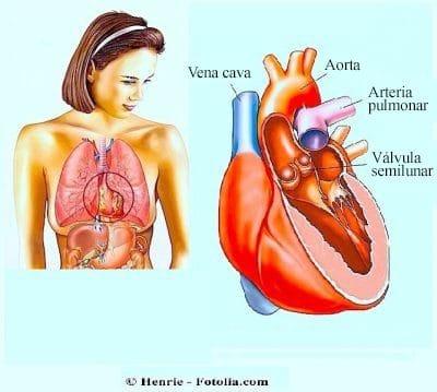 Dolor debajo del pecho izquierdo en la costilla