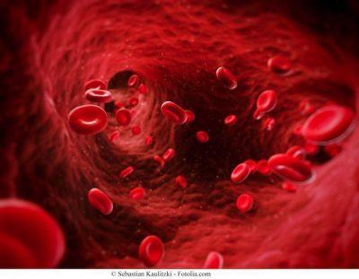 Anemia, sangre,circulación