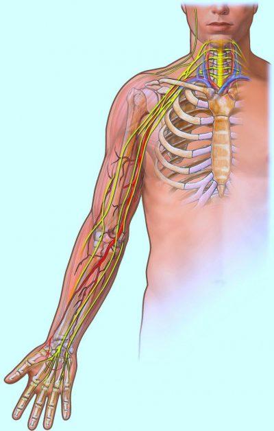 dolor y ardor en el pecho y brazo izquierdo