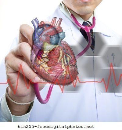 médico, cardiólogo