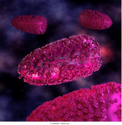 virus, rabia